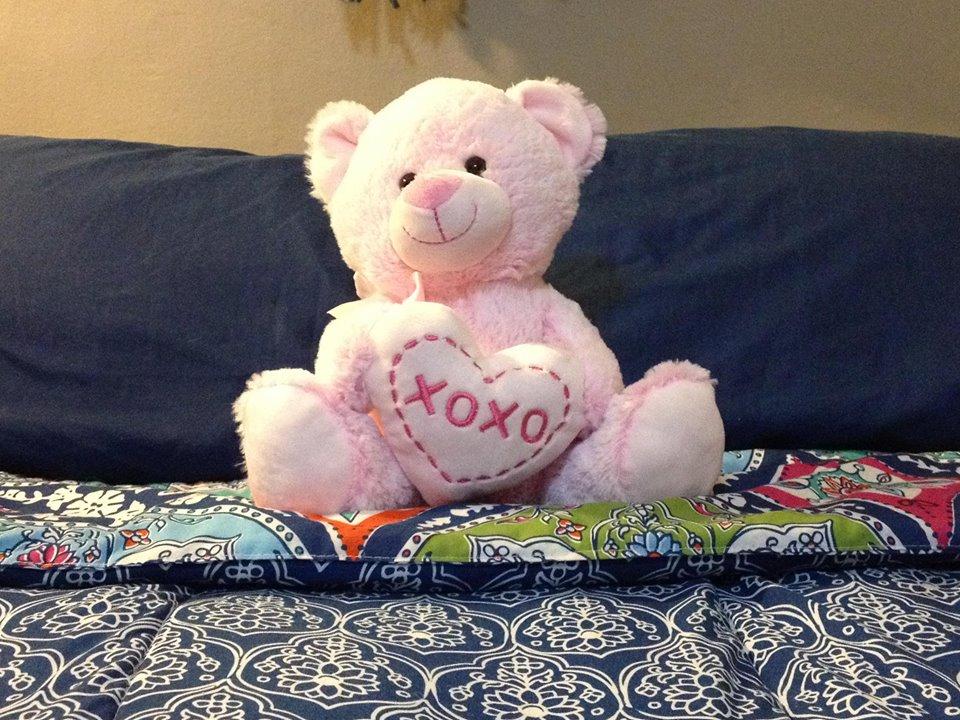 Mx Nillin Fucks… A Valentine's Teddy Bear!
